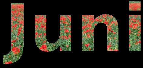 Juni-Special
